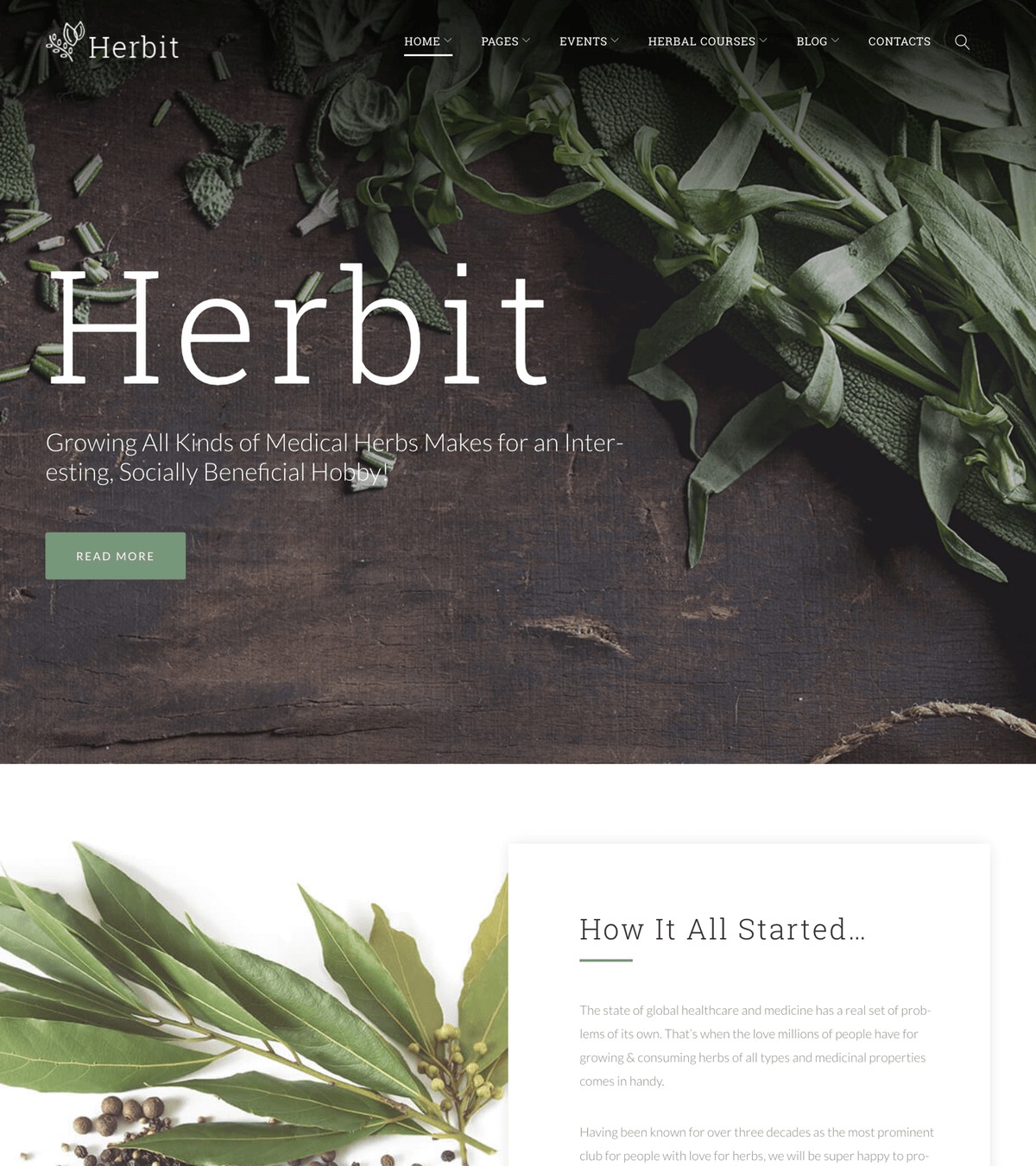 Herbit medical WordPress template