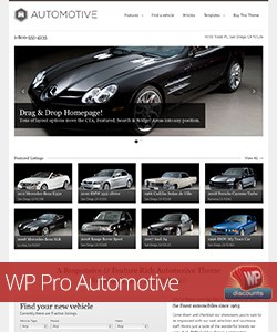 WP Pro Automotive